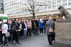 Het stellen op Hachiko-Standbeeld Stock Foto's