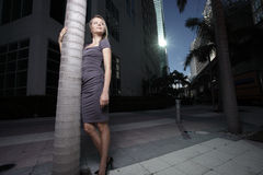 Het stellen van de vrouw door een boom in de stad stock afbeeldingen