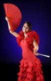 Het stellen van het flamenco Stock Foto's