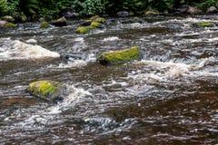 Het stil leven door de rivier royalty-vrije stock fotografie