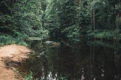 Het stil leven door de rivier stock afbeelding