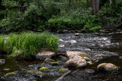 Het stil leven door de rivier stock afbeeldingen