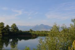Het stille water van een meer staat mooie spiegelbezinningen op zonnige dag toe Meer Skadar, Albanië, Montenegro royalty-vrije stock foto