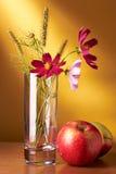 Het stilleven van bloemen en van appelen Royalty-vrije Stock Afbeeldingen