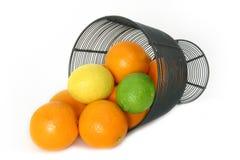 Het Stilleven van Citrusvruchten over Wit Royalty-vrije Stock Fotografie