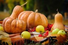 Het stilleven van de de herfstdankzegging royalty-vrije stock afbeelding