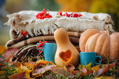 Het stilleven van de de herfstdankzegging Royalty-vrije Stock Foto