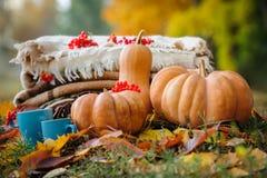 Het stilleven van de de herfstdankzegging Royalty-vrije Stock Fotografie