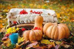 Het stilleven van de de herfstdankzegging Royalty-vrije Stock Afbeeldingen