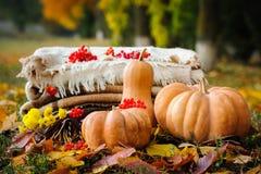 Het stilleven van de de herfstdankzegging Stock Afbeeldingen