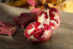 Het stilleven van de granaatappel Stock Foto's