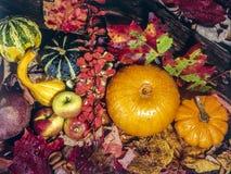 Het stilleven van de herfst Stock Foto