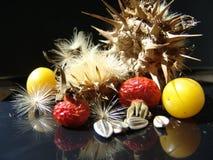 Het stilleven van de herfst Stock Afbeeldingen