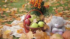 Het stilleven van de herfst stock video