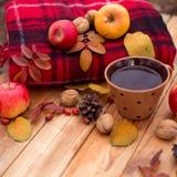 Het stilleven van de herfst Stock Foto's