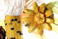 Het stilleven van de herfst. Maïs, droge bloemen en bladeren 0043 stock foto's