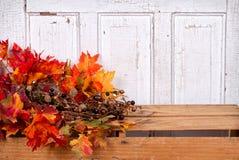 Het stilleven van de herfst met eikels en bladeren Stock Foto's