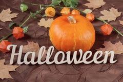 Het stilleven van de herfst Pompoen met bloemen, esdoornbladeren en Halloween-vakantietekst Stock Afbeelding