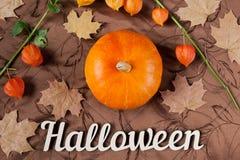 Het stilleven van de herfst Pompoen met bloemen, esdoornbladeren en Halloween-vakantietekst Hoogste mening Stock Fotografie