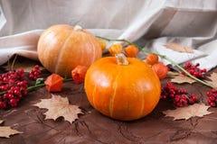 Het stilleven van de herfst Pompoenen met bloemen, esdoornbladeren en bessen Stock Foto