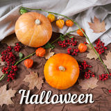 Het stilleven van de herfst Pompoenen met bloemen, esdoornbladeren en Halloween-vakantietekst Hoogste mening Stock Foto