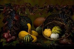 Het stilleven van de herfst van kleurrijke pompoenen Royalty-vrije Stock Foto