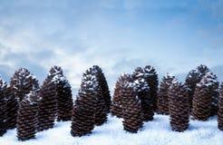 Het stilleven van de Kerstmisdenneappel in sneeuw stock foto's