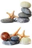 Het Stilleven van de kust Stock Afbeeldingen