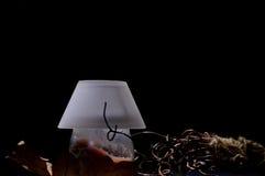 Het stilleven van de nacht stock afbeeldingen
