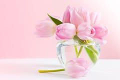 Het stilleven van de pastelkleur met tulpen Stock Afbeeldingen