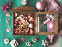 Het stilleven van de winterbloemen Stock Afbeeldingen