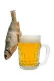 Het stilleven van het bier Royalty-vrije Stock Afbeelding
