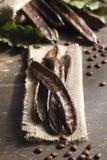 Het stilleven van het johannesbrood Stock Afbeelding