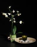 Het stilleven van het kuuroord met orchidee Royalty-vrije Stock Afbeeldingen
