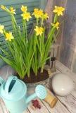 Het stilleven van het land met bloemen stock afbeelding