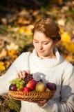Het stilleven van vruchten stock afbeeldingen