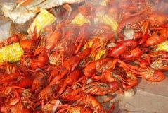 Het stomen van cray vissen Stock Foto