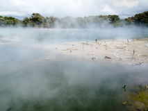 Het stomen van de vulkanische hete lente in Rotorua, N Zeeland Royalty-vrije Stock Foto's