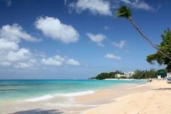 Het strand bij de baai van Payne, Barbados Stock Foto's
