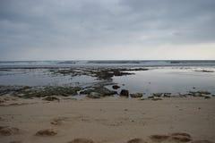 Het strand is bij hoogtijd Stock Foto's