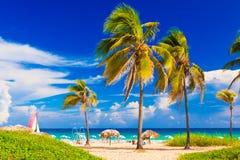 Het strand in Cuba stock afbeelding