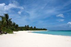 Het Strand Culebra van het flamenco Royalty-vrije Stock Afbeelding