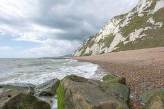 Het Strand Dover van de Samphireschoffel Stock Fotografie