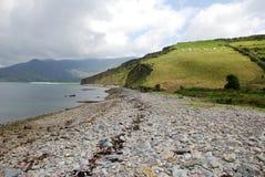 Het strand en de heuvels van de kiezelsteen dichtbij de oceaan Royalty-vrije Stock Afbeelding