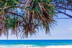 Het strand en het landschap in Surfersparadijs op de Gouden Kust Stock Fotografie