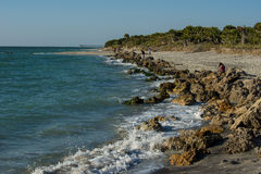 Het Strand Florida van Venetië Stock Foto's