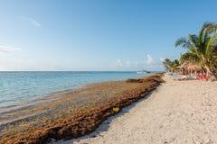 Het strand in Mahahual, Mexico Royalty-vrije Stock Afbeelding
