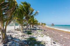 Het strand in Mahahual, Mexico Stock Foto