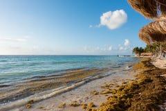 Het strand in Mahahual, Mexico Stock Fotografie