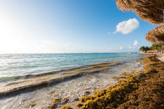 Het strand in Mahahual, Mexico Stock Afbeelding
